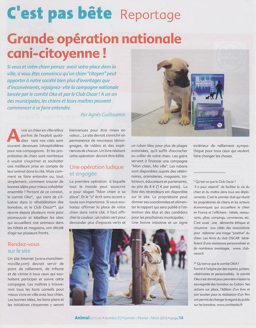 Article Animal Attitude