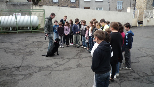Mise en pratique d'une approche avec Caline, école Saint-André de Massiac(15), classe de CM1 et 2. © Florent Leydet