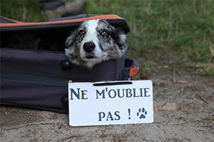 ne_moublie_pas
