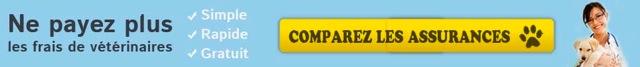 comparez-offres2