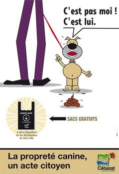 dejection-canine-cebazat