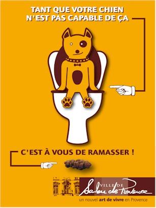 dejection-canine-salon-provence